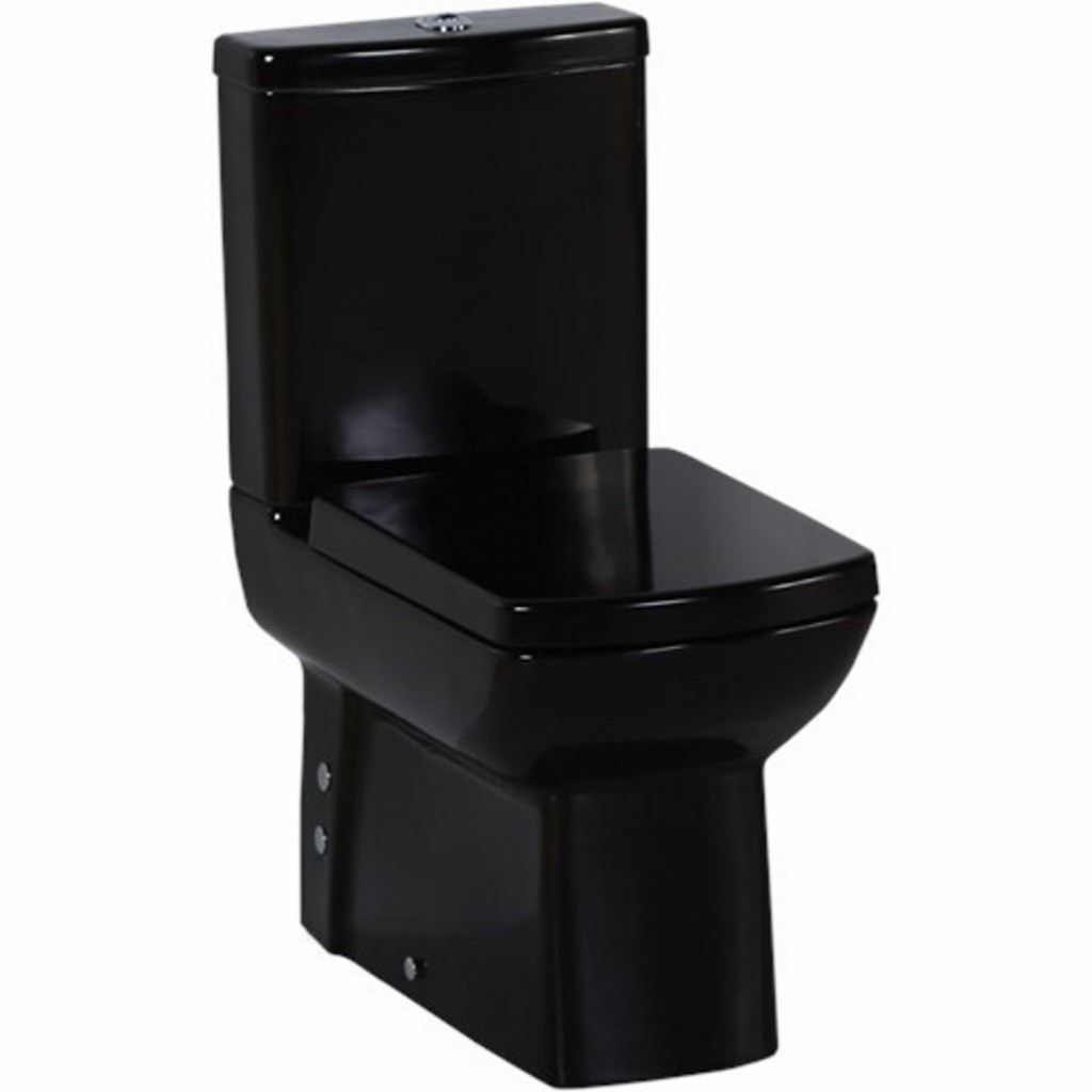 Creavit Lara Close Coupled Back to Wall Combined Bidet...